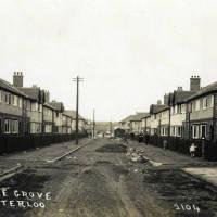 Pine Grove Waterloo