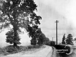 West Barnes Lane: View looking north