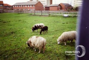 Deen City Farm, Church Road