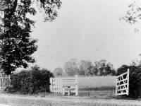 West Barnes Park