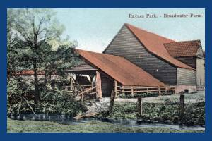 Broadwater Farm, Raynes Park
