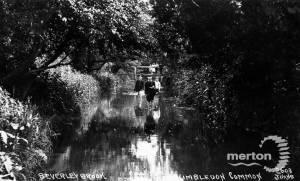 Beverley Brook, Wimbledon