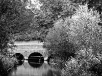 Wandle bridge pictured near Grove Mill, Mitcham