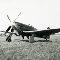 Hawker Tempest V: Napier