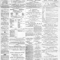 Ross Gazette - 1879
