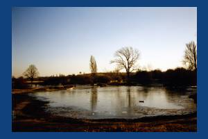 Seven Islands Pond covered with ice, Mitcham Common