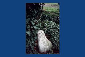 Morden Hall Park, Morden: Stone around Neptune