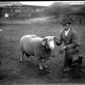 G36-330-01 Handler with prize ram at show.jpg