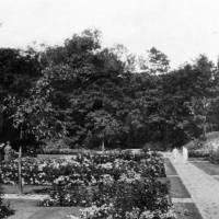 Southport, Hesketh Park, Rose Garden