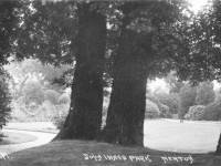 John Innes Park, Merton Park