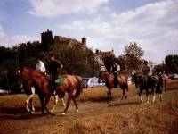 Wimbledon Common: Horse Riding & Pony Trails