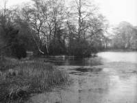Lake in the grounds of Margin House