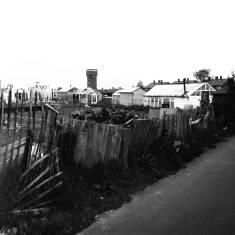 Horsley Hill Road Allotments