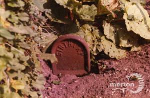 Lavender Grove, No.44, Mitcham: Garden