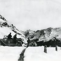 WWI Napier's