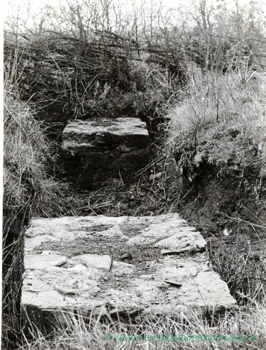 Sutton Walls, column bases