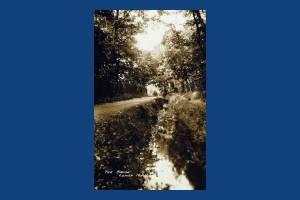 Lower Morden Lane: Pyl Brook