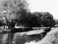 The River Wandle between Merton Abbey and Phipps Bridge