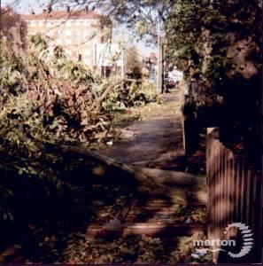London Road, Mitcham:  Storm Damage