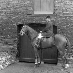 G36-312-08 Rider on hunter with a small white blaze.jpg
