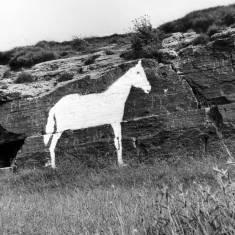 White Horse, Cleadon Hills
