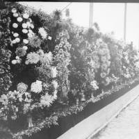 Southport Flower Show Display in 1924