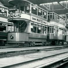 Trams in Depot