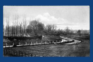 Watercress Beds by Abbey Walls