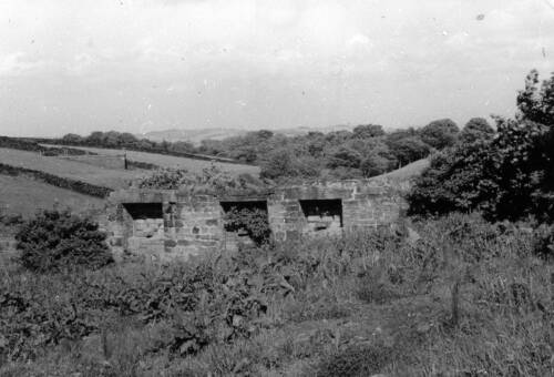 33 Ruins of Elihu Dickinson\'s Fulling Mill, Birdsedge