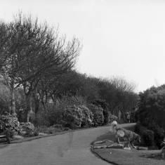 Readhead Park