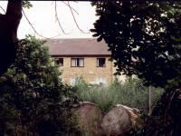 Morden Hall Park, Morden: View towards Phipps Bridge Estate