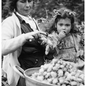 Hop-picking was a family affair and a good source of extra cash. A mother and child from the Gypsy, Roma and Traveller community. Photograph from Claston Farm, Dormington where picking by hand ended in 1957.