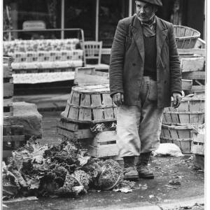 113 - Man in marketplace; Savoy cabbages at his feet