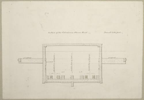 """Caledonia"": James Watt Junior"