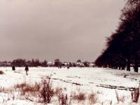 Wimbledon Common: Snow