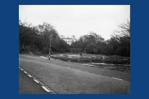 Scio Pond, Wimbledon Common