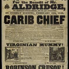 Carib Chief