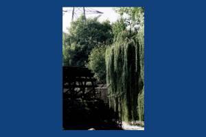 Merton Abbey Mills: View of the waterwheel