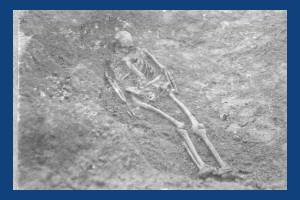 Skeleton from the Anglo-Saxon cemetery near Morden Road, Mitcham