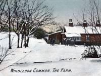 The Farm in winter, Wimbledon Common