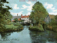 Wandle at Mitcham