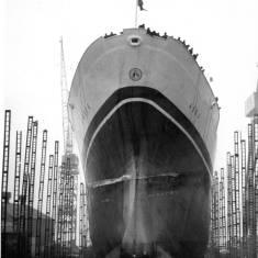 Cargo Liner Aska