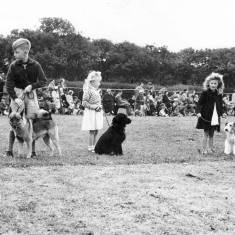 Dog Show at Flower Show, South Shields.