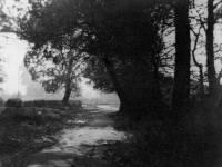 Bow Lane, Lower Morden