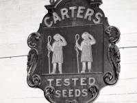 Carters Tested Seeds: Trademark