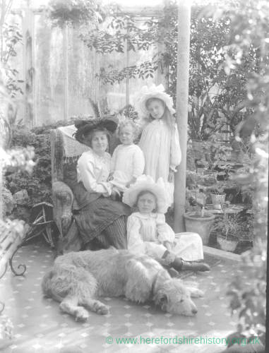 G36-258-01 Family portrait taken in orangery, mother with three children and wolfhound at their feet.jpg