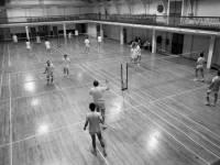 Wimbledon Leisure Centre, Latimer Road: Badminton courts