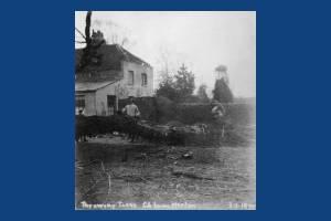 Church Lane: Throwing Trees, Merton Park