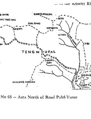 Area north of Palel Tamu Road