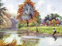 Man fishing in the River Wandle